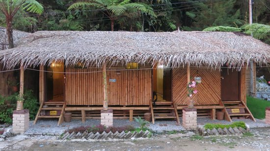de-native-guest-house